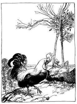 Le coq et la perle dans POULE et COQ Esope_00_Coq_Pierre_Precieuse-2b5a1